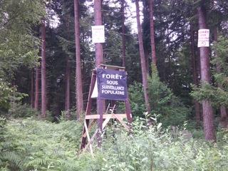 Forêt sous surveillance populaire